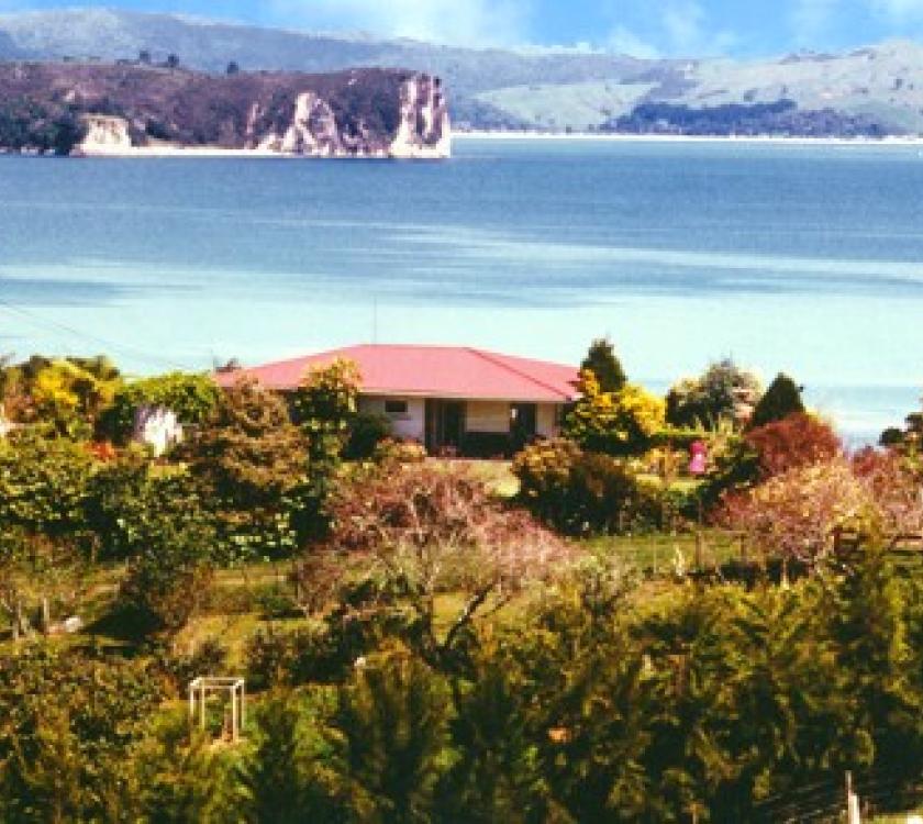 Purangi Garden