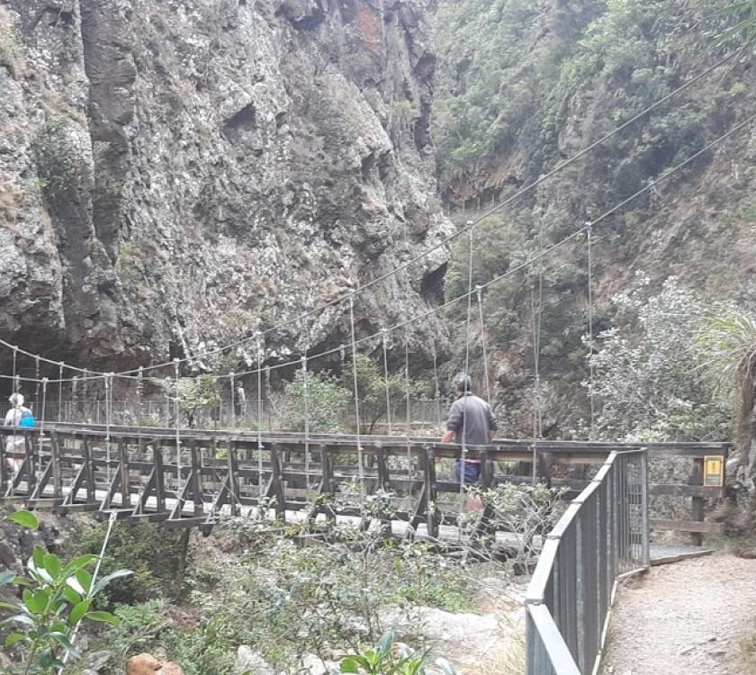 2-karangahake-gorge-bridge