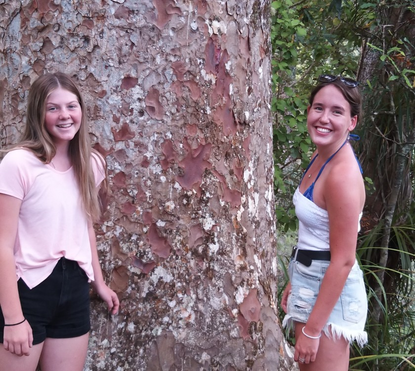6-young-people_up-close-with-kauri_apr-2020