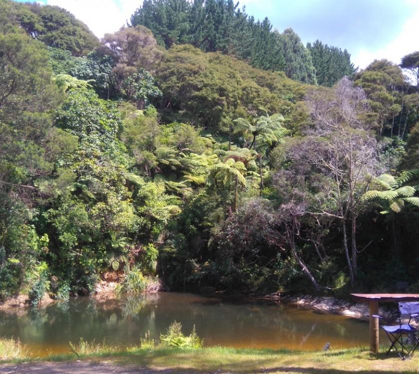 Coro Camping Pool wide