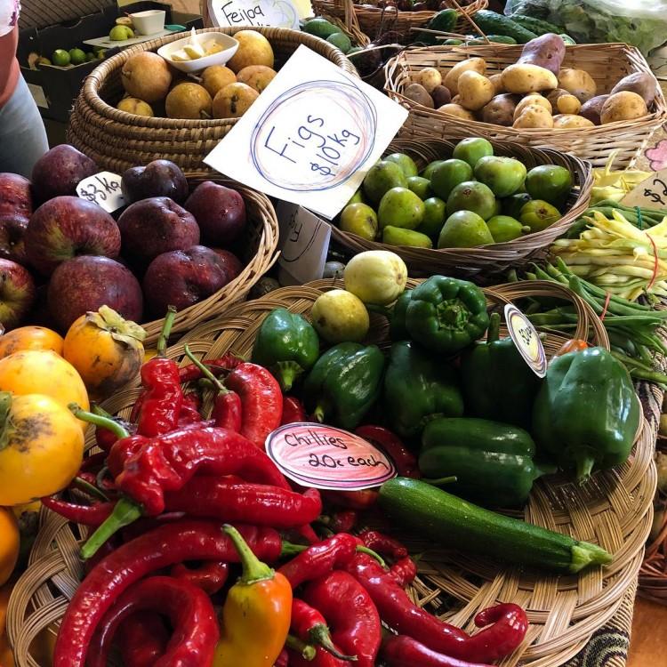 Coroglen Farmers Market2