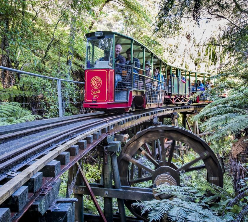 Driving Creek Railway Family Package