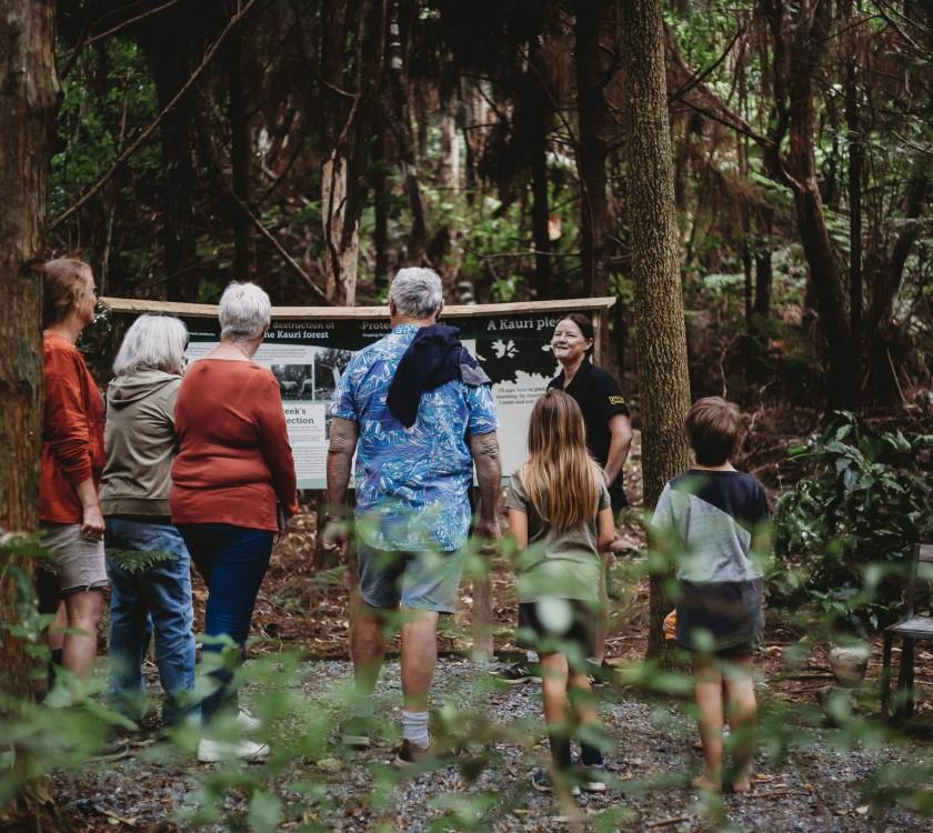 Driving Creek Railway Conservation Park