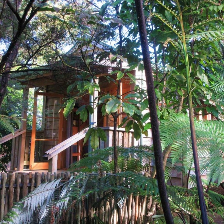 Escape to the Hideaway Cabin