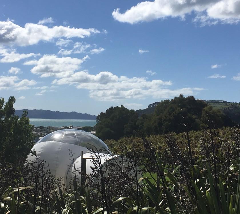 Mercury Bay Estate Bubble Tent v2