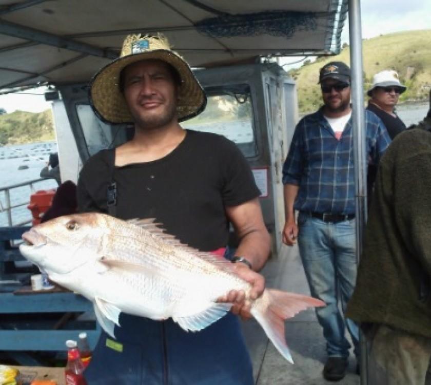Mussel Barge Sanpper Safaris 1