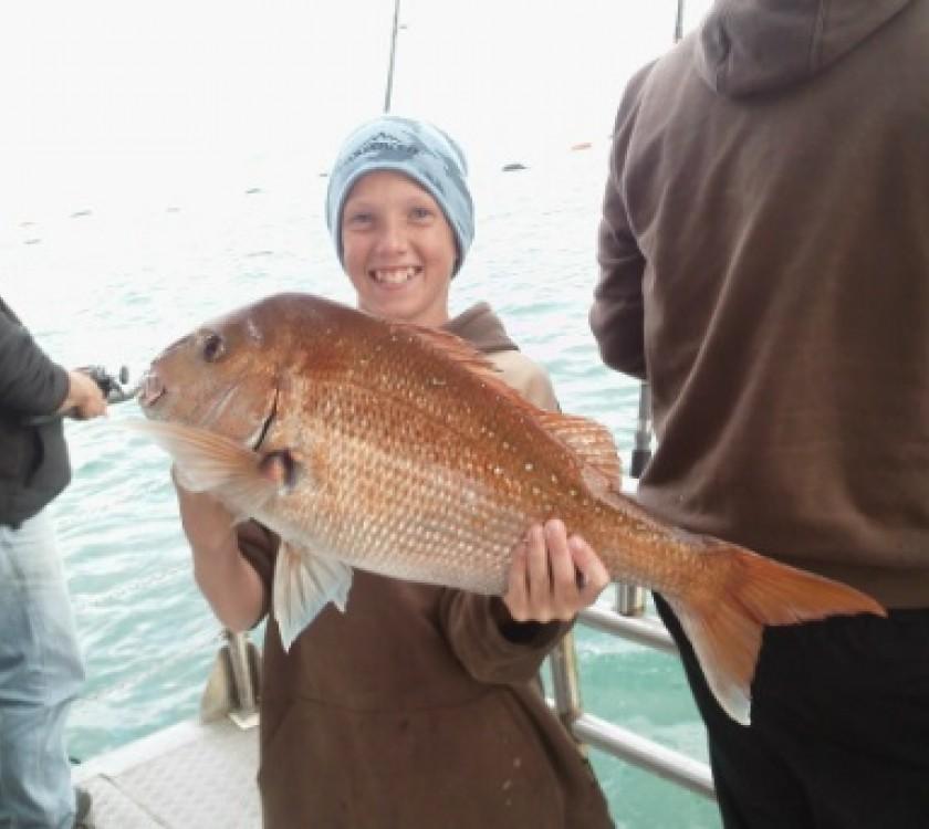 Mussel Barge Sanpper Safaris 2
