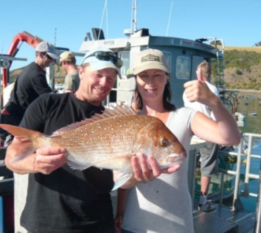 Mussel Barge Snapper Safaris