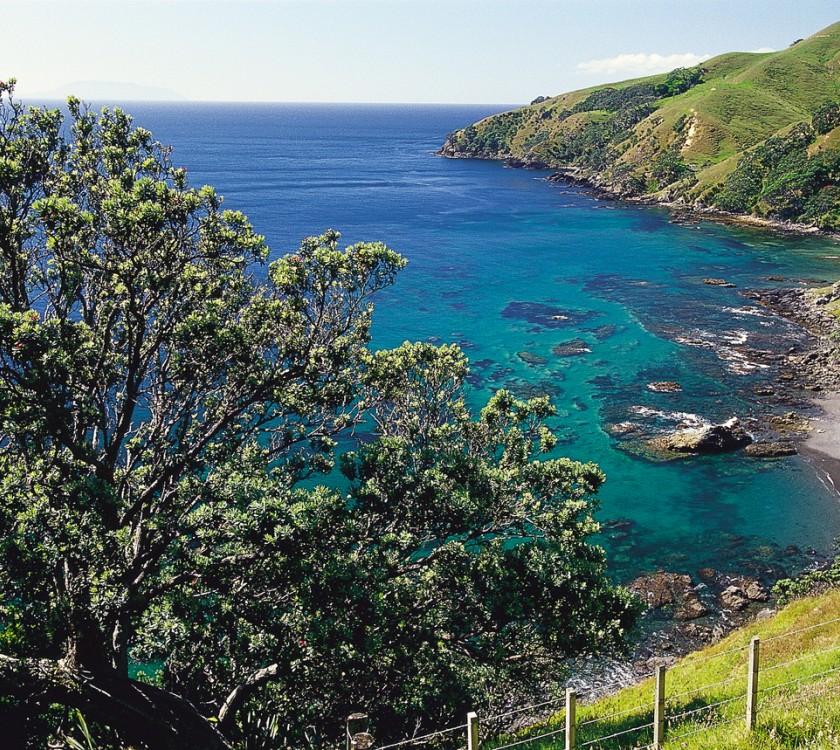 Northern Coromandel Bay