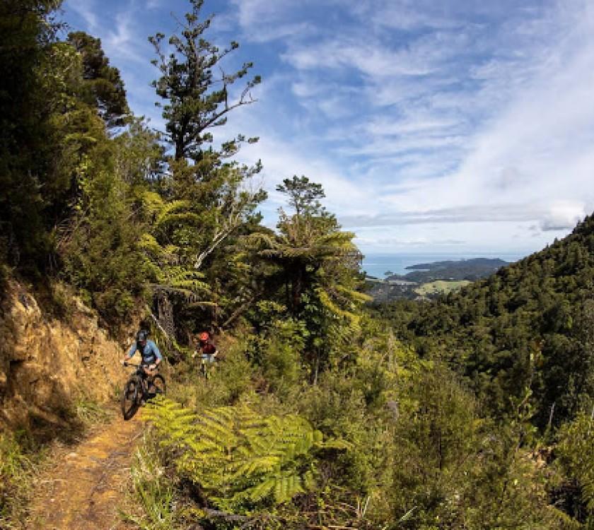 Ride Coromandel Bike Park