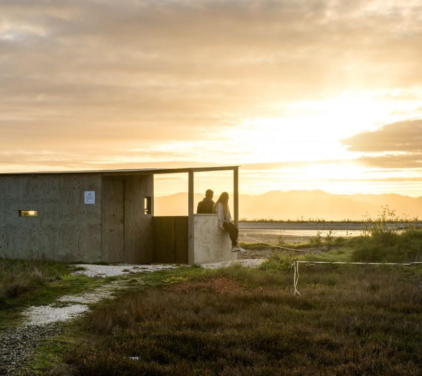 Shorebird Coast5