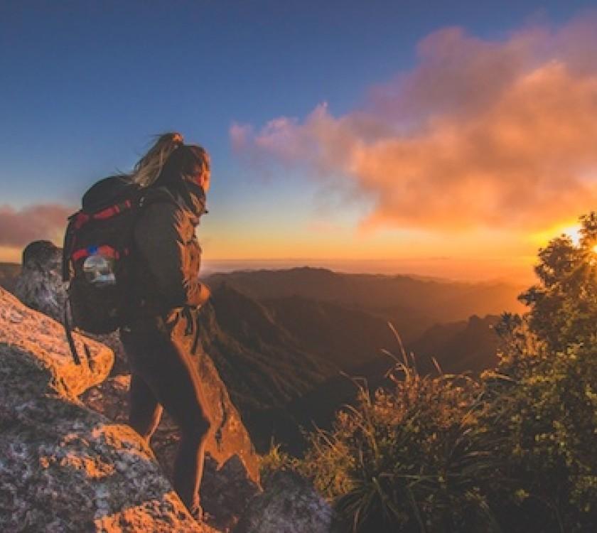 Kauaeranga Kauri Trail and Pinnacles Walk