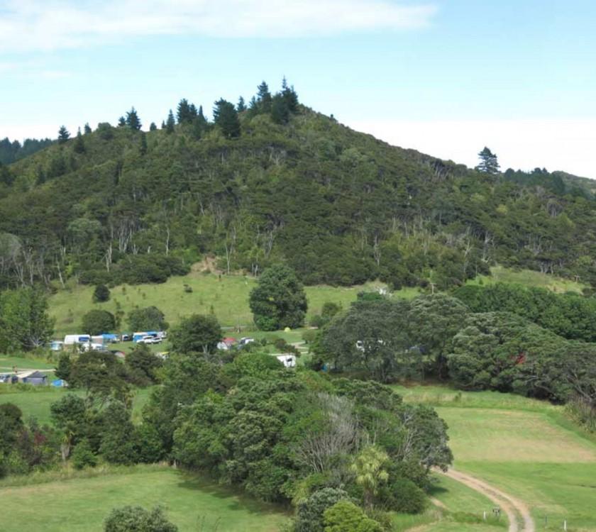 Waikawau Bay Campsite