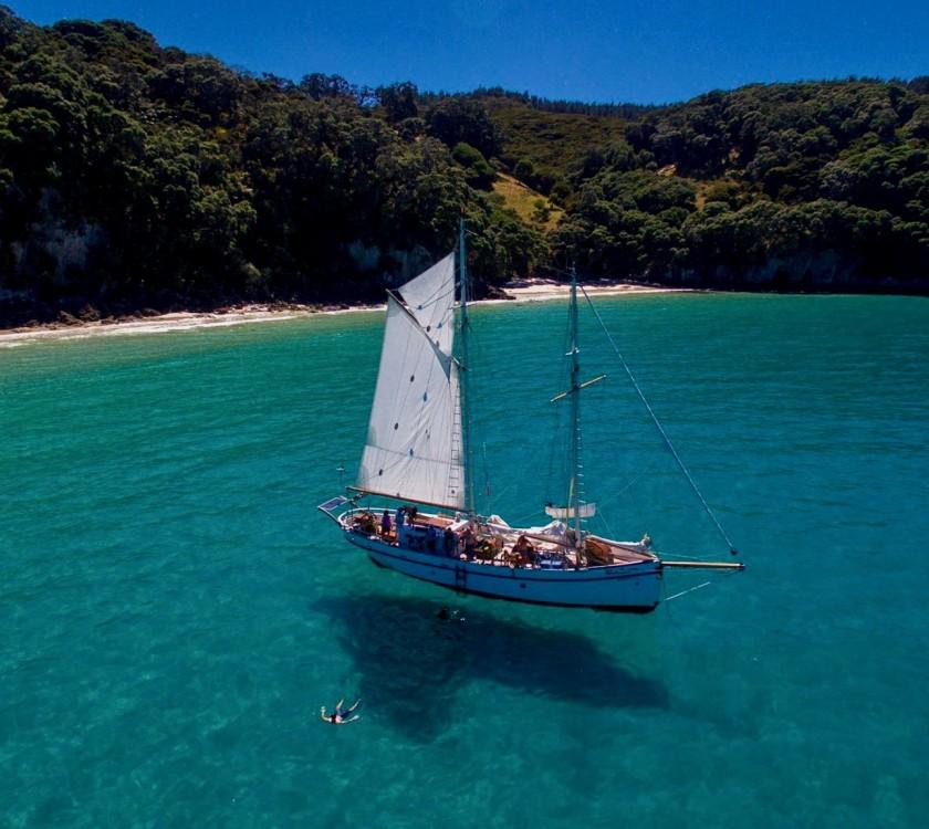 Windborne Great Mercury Island