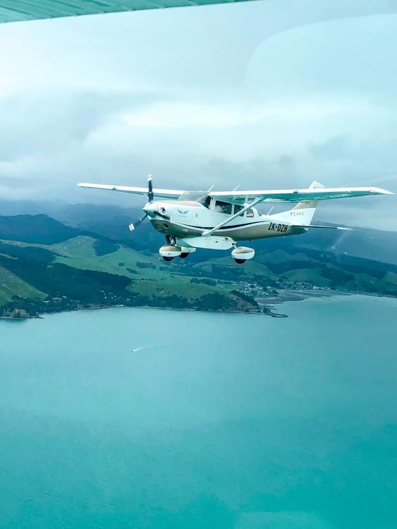 air-auckland-20201030-fishing-a-11