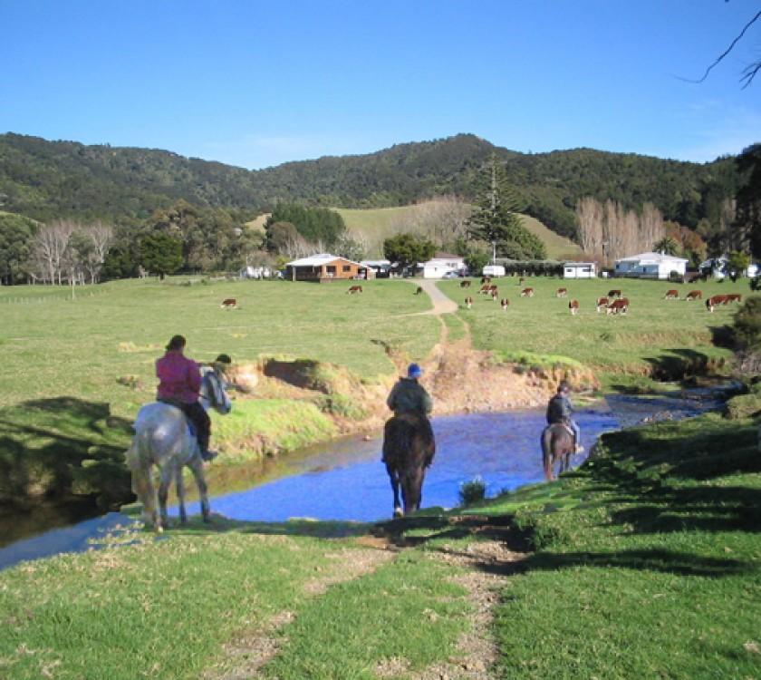horse treck
