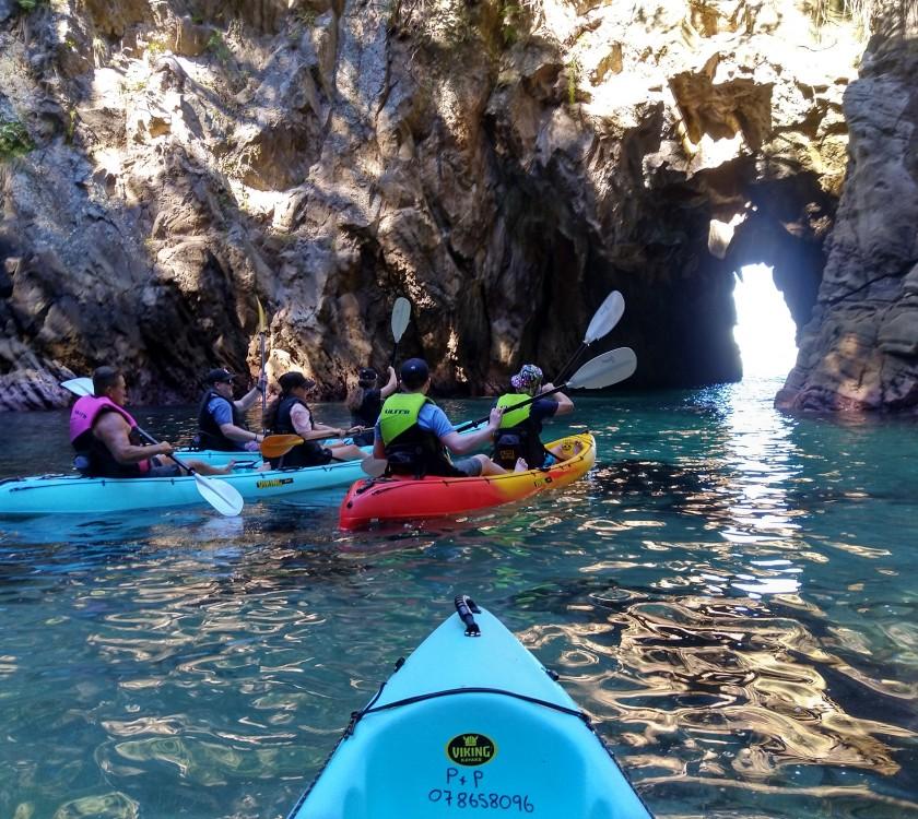Whenuakura Wildlife Sanctuary, Donut Island Kayak Tours & Hire