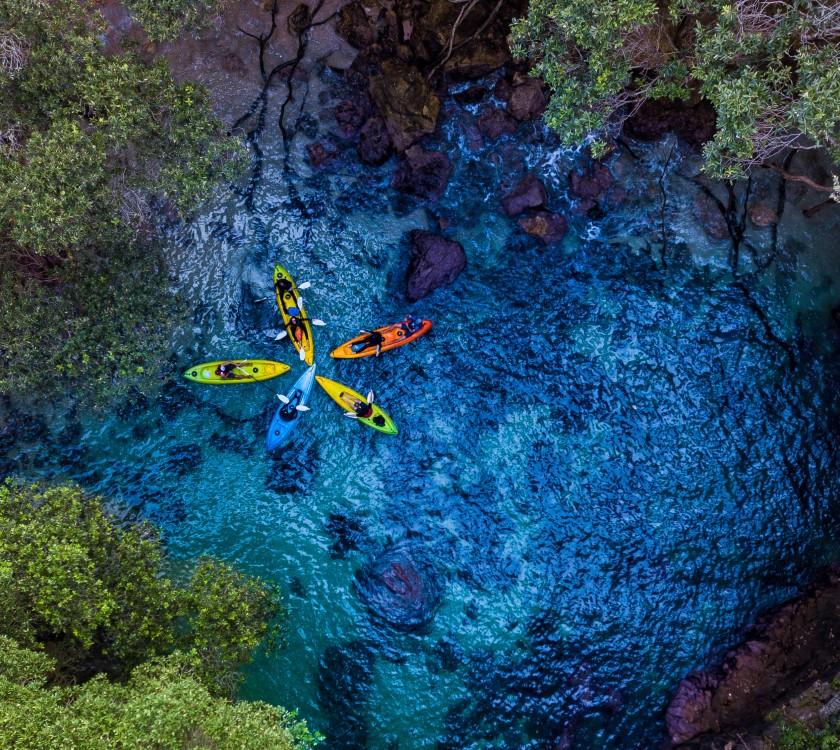 Whenuakura Island (Donut Island) Kayak Tour