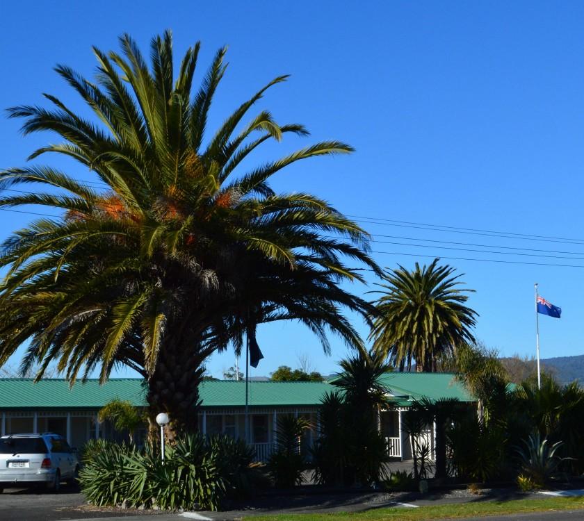 Palm Motel Waihi