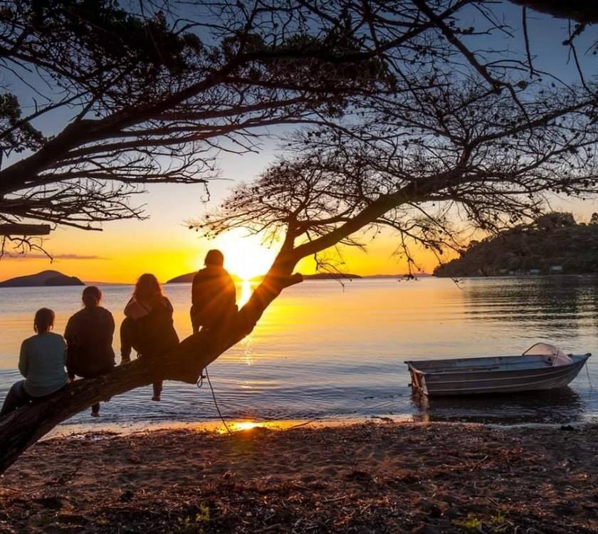 Shelly Beach TOP 10 Holiday Park (Beachfront Coromandel)
