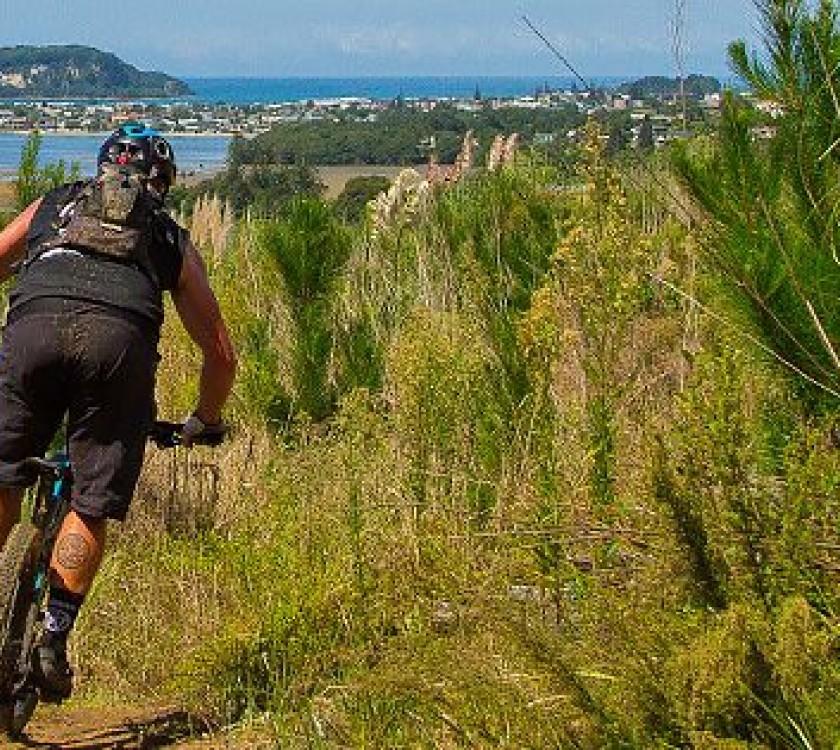 whangamata Ridges Mountainbike Park 1