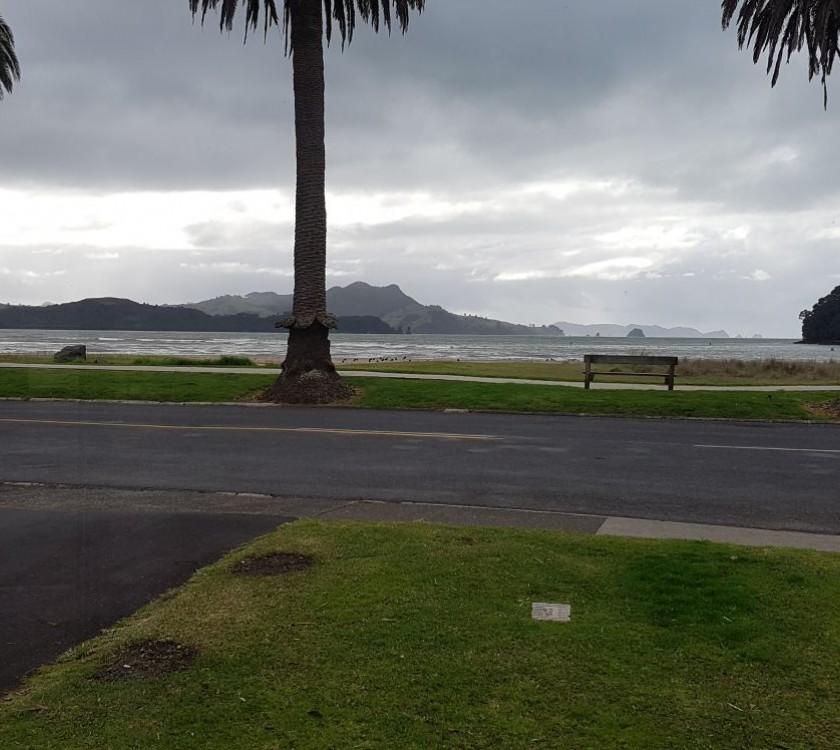 whitianga-beach-opposite-anchorage-motel-167
